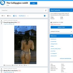 Ass o ass.com