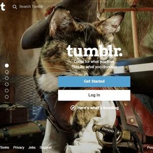 Tumblr porn video sites